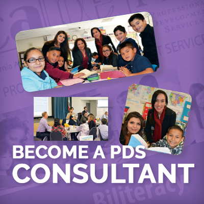 PDS Page_Consultant_ads_400px