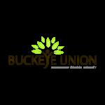 <b>SPANISH TEACHER – BUCKEYE UNION SCHOOL DISTRICT</b>