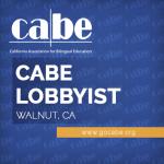 <b>Lobbyist (Contract Position)</b>